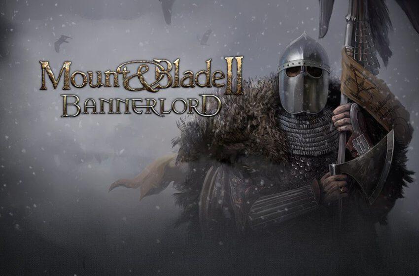 Mount & Blade 2: Bannerlord-rozgrywka